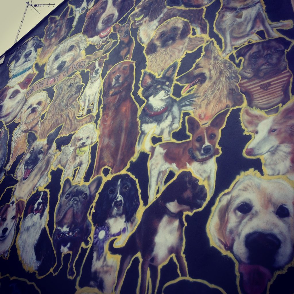 Brighton street art dog mural
