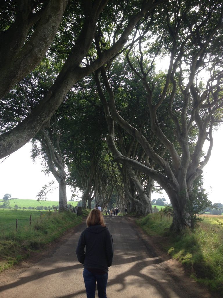 The King's Road Game of Thrones Northern Ireland